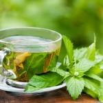 Natural tea to help you lose weight and feel less bloated, slendertoxtea